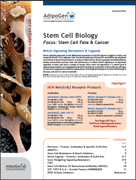 Stem Cell Biology Flyer 2013