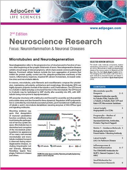 Neuroscience Research Brochure 2017