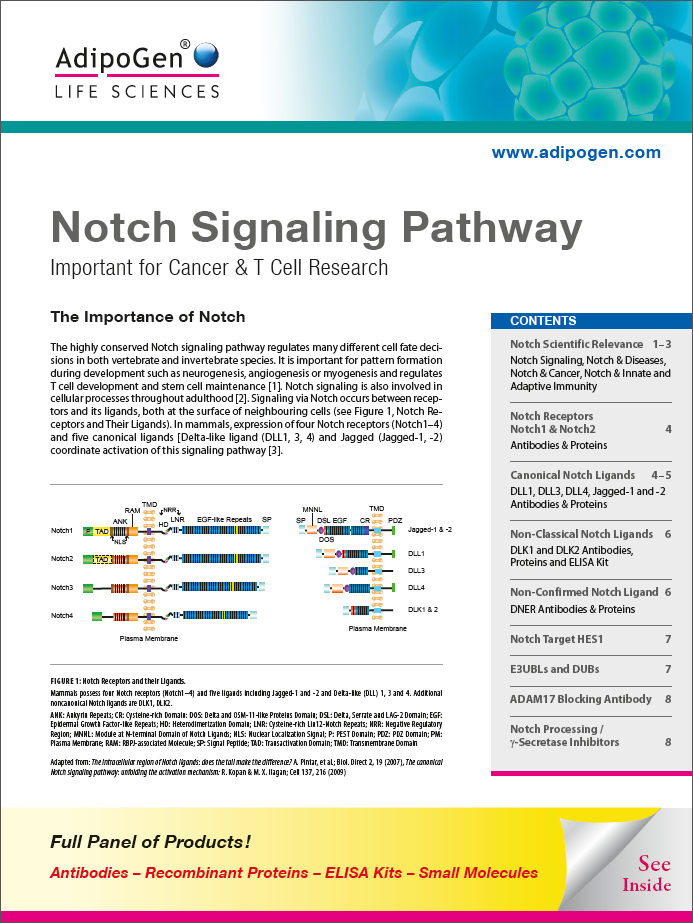 Notch Signaling Pathway Brochure 2017
