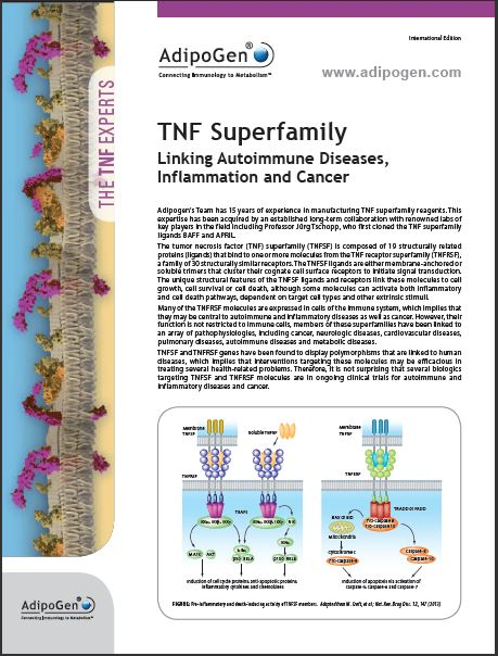 TNF Superfamily Brochure 2013