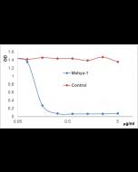 anti-APRIL (human), mAb (blocking) (Mahya-1) (preservative free)