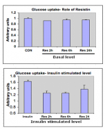 Effect of Resistin (human) (rec.) (AG-40A-0010Y) on glucose uptake in L6 cells.  Inhibition of insulin-stimulated glucose uptake in L6 skeletal muscle cells by resistin (as expected: 1μg/ml). Rat myoblasts (L6) were cultured and differentiated into myotub
