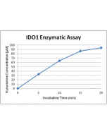 Activity assay figure of IDO (human) (rec.) (His) (highly active) (AG-40B-0161). IDO (human) has been tested with a protocol using catalase (see our website). The specific activity has been calculated to be >100'000U/mg protein with L-tryptophan as substr