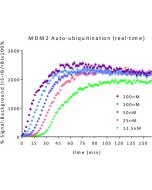 MDM2 E3 Ligase TR-FRET Kit