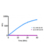 Kinetic Activity: UCHL3 (SBB-DE0023) activity with Ubiquitin-AMC (SBB-PS0043) measured in the presence of 12.5nM and 0.1nM Ubiquitin vinyl sulfone (SBB-PS0032).
