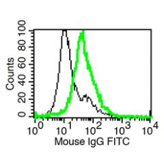 Detection of endogenous mouse IL-1R2 with IL-1R2 (mouse), mAb (rec.) (Praxy-1-1) (AG-27B-0011). Method: In vitro-cultivated BMN (Neutrophils) (stimulated 24h with hydrocortisone) were stained with IL-1R2 (mouse), mAb (rec.) (Praxy-1) (thick green l