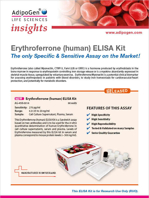 Erythroferrone Insights 2019