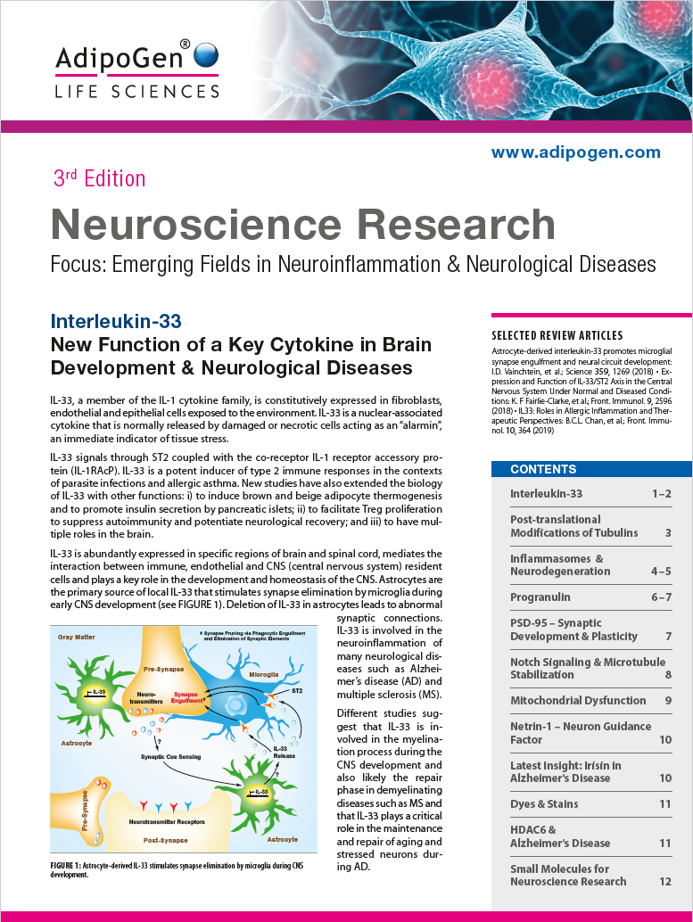 Neuroscience Research Brochure 2019