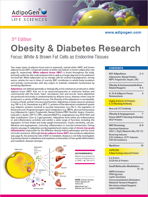 Obesity & Diabetes Brochure 2017