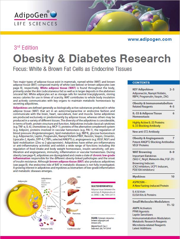 Obesity & Diabetes Brochure 2017