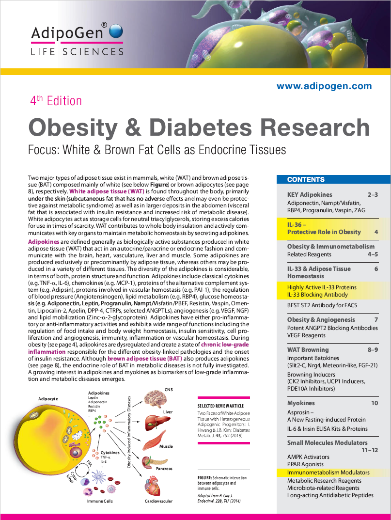 Obesity & Diabetes Brochure 2020