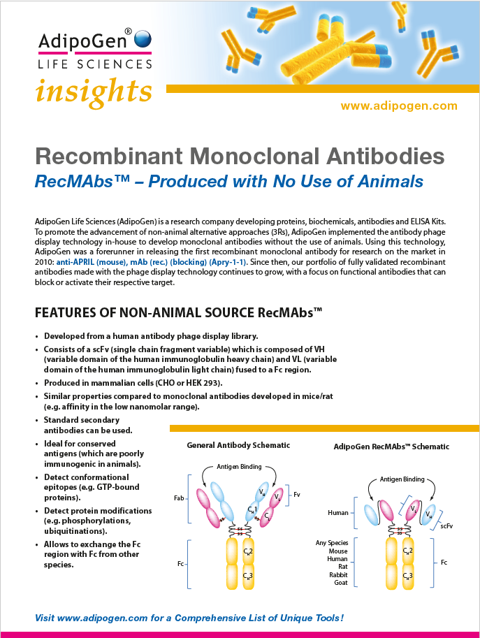 Recombinant Antibodies Insights 2019