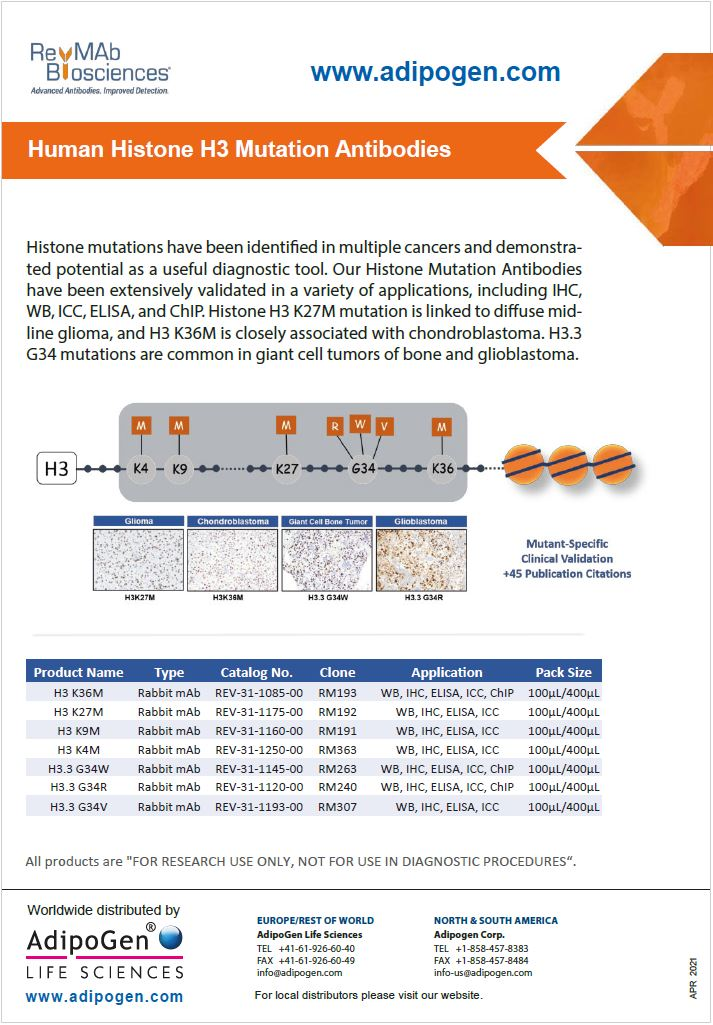 RevMab Biosciences - H3 Histone Mutations Abs