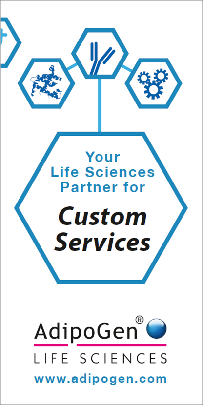 Custom Services Flyer