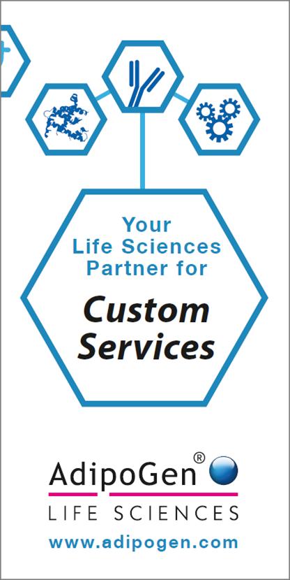 Custom Services Flyer
