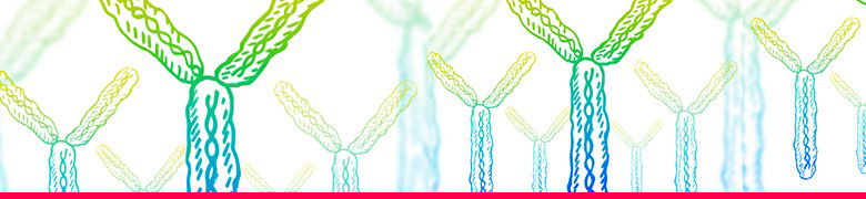 Antibody Validation Banner