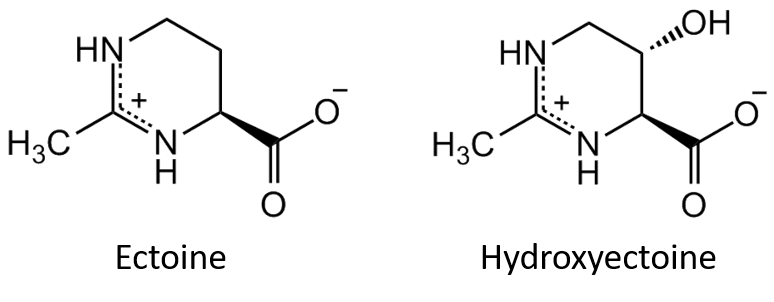Chemcial Strucutres of Ectoine and Hydroxyectoine