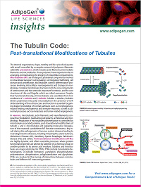 Tubulin and PTMs Insights 2020
