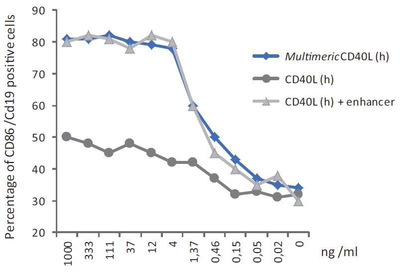 MultimericCD40L