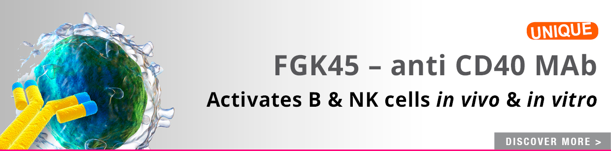CD40 Blocking mAb (FGK45)