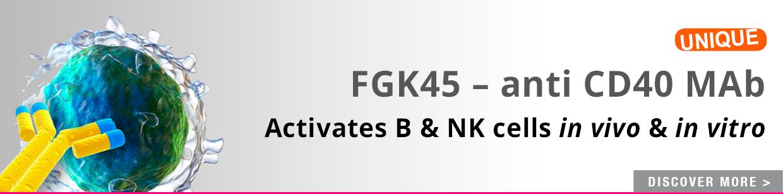 CD40 Blocking mAb (FGK45)