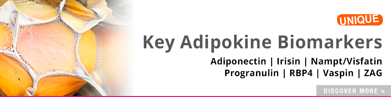 Key Adipokine ELISA Kits