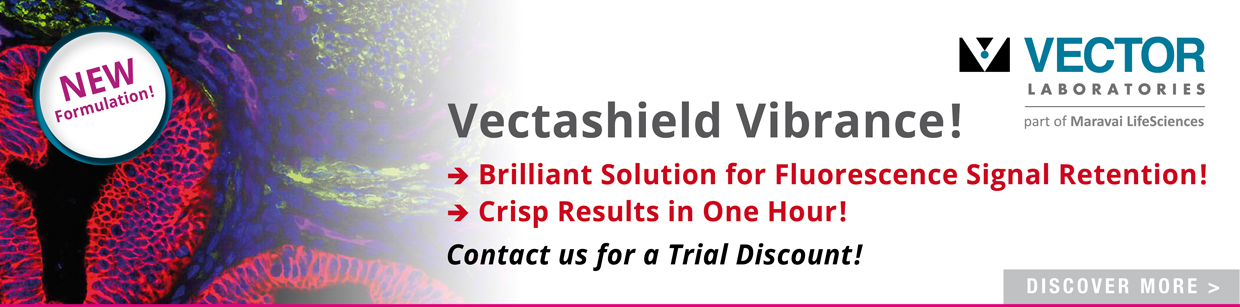 Vectashield Vibrance