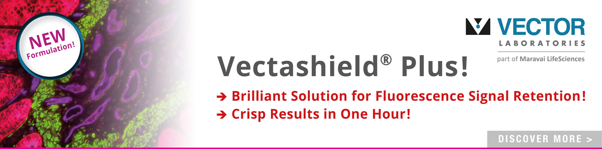 Vectashield Plus