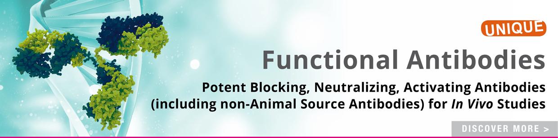 Functional Antibodies 2019