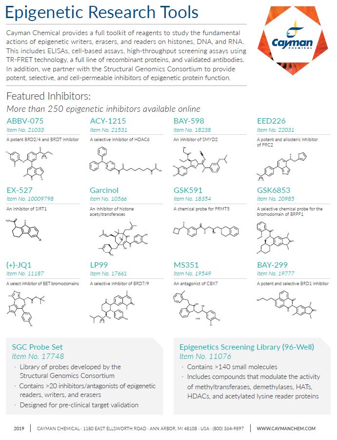 Epigenetic Research Tools