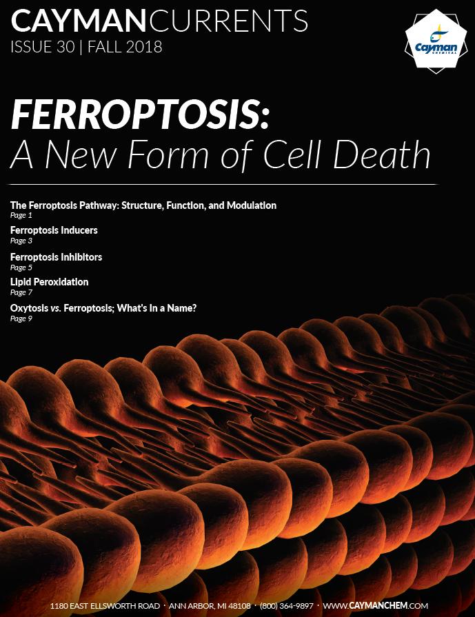 Ferroptosis