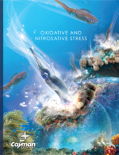 Oxidative and Nitrosative Stress