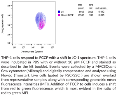JC-1 Mitochondrial Membrane Potential Flow Cytometry Assay Kit