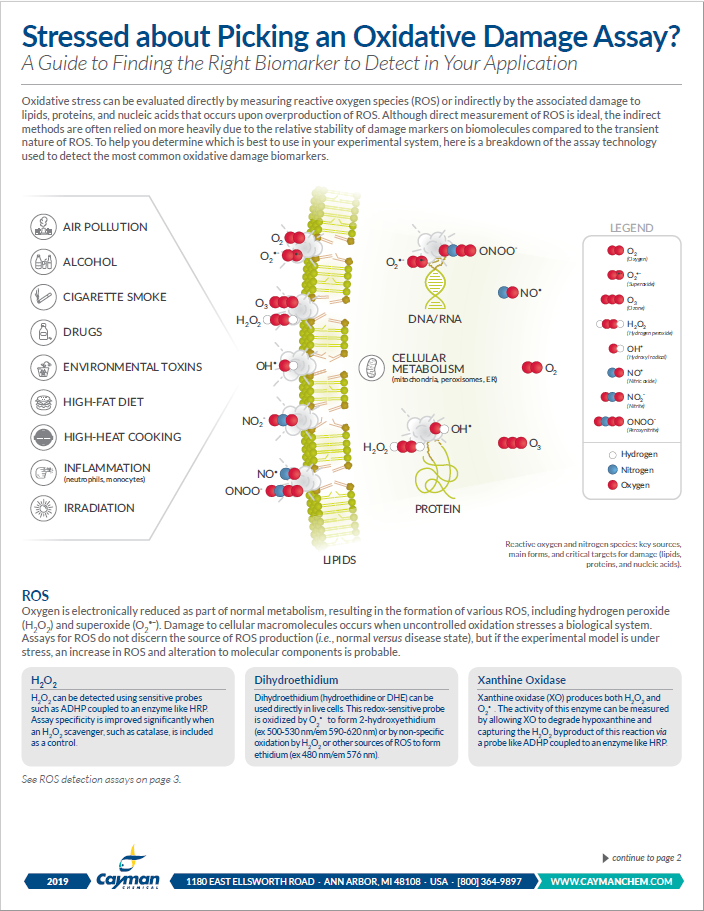 Oxidative Stress Assays Cayman Chemical